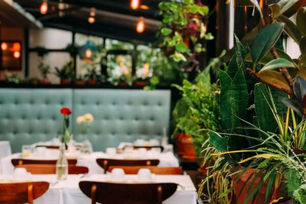Newest restaurants in Amsterdam